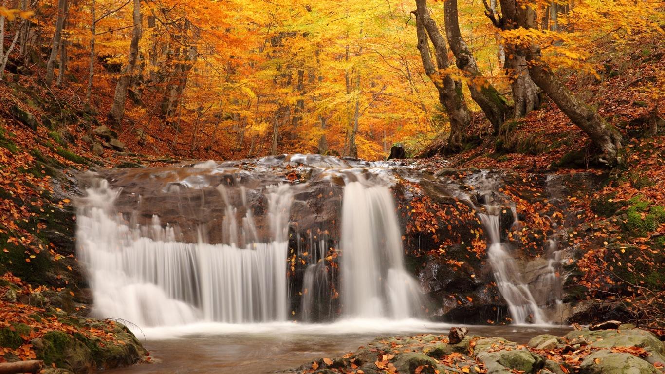 осень, лес, река, водопад, деревья, листья, камни.