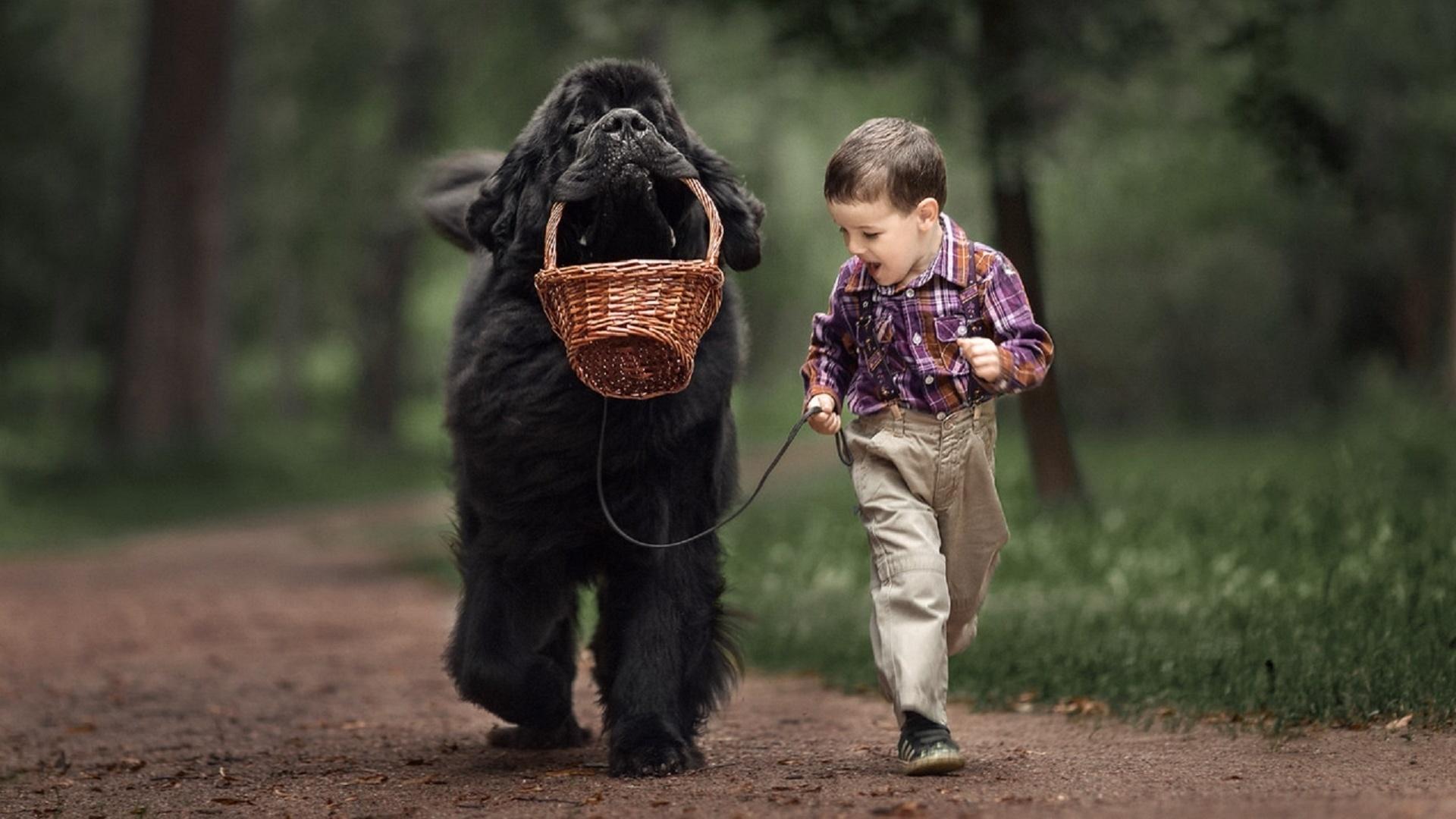 Веселые картинки людей с животными