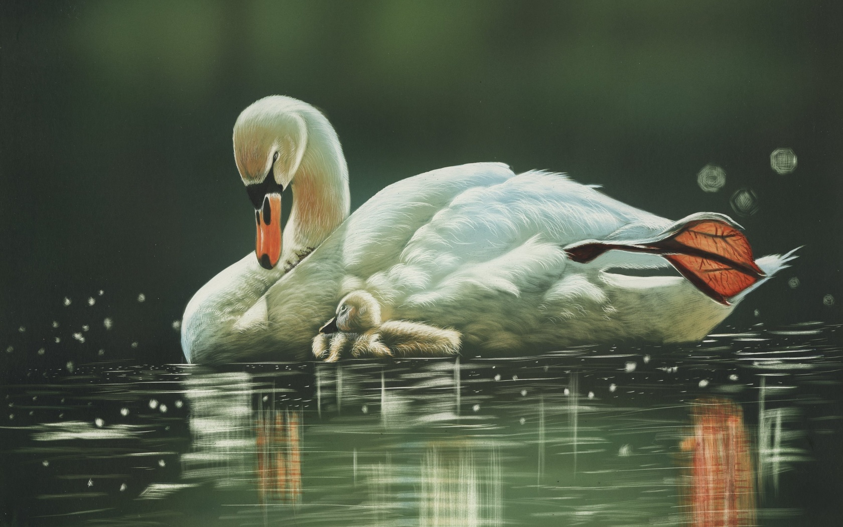 Лебеди открытки, открыток пожеланиями