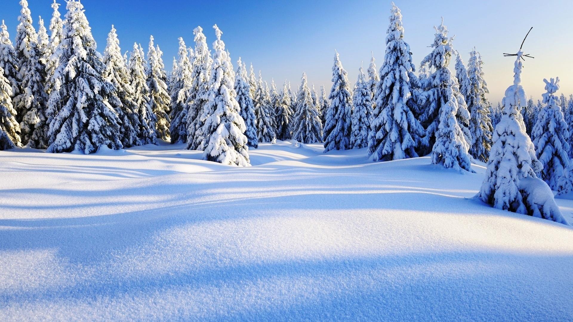 Картинки с красивой зимой, открытка мая картинки