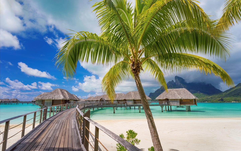 Картинки с островом и пальмами, днем рождения