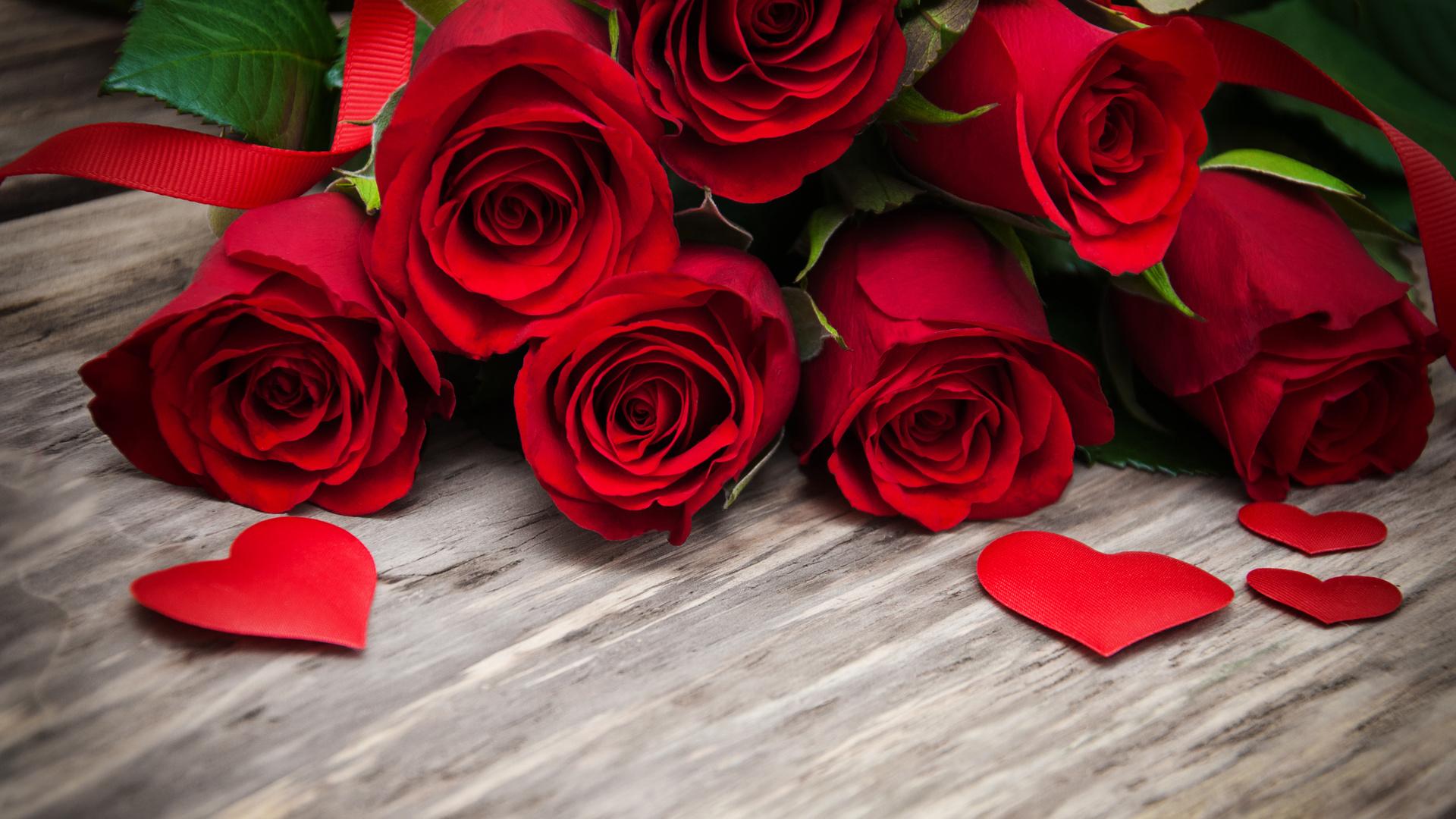 Картинки цветов розы красные