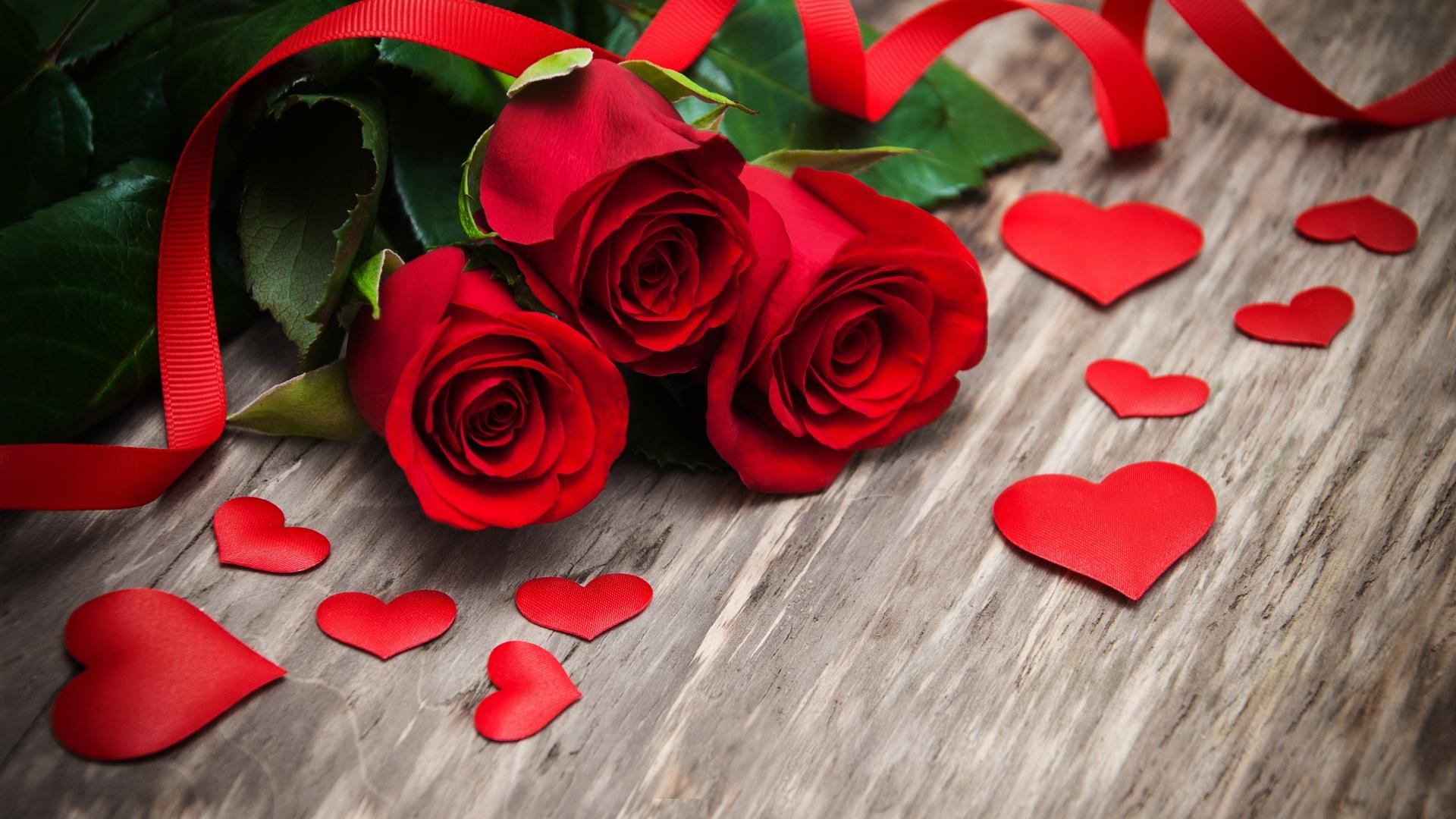 Картинка роза про любовь, кошки анимационные картинки