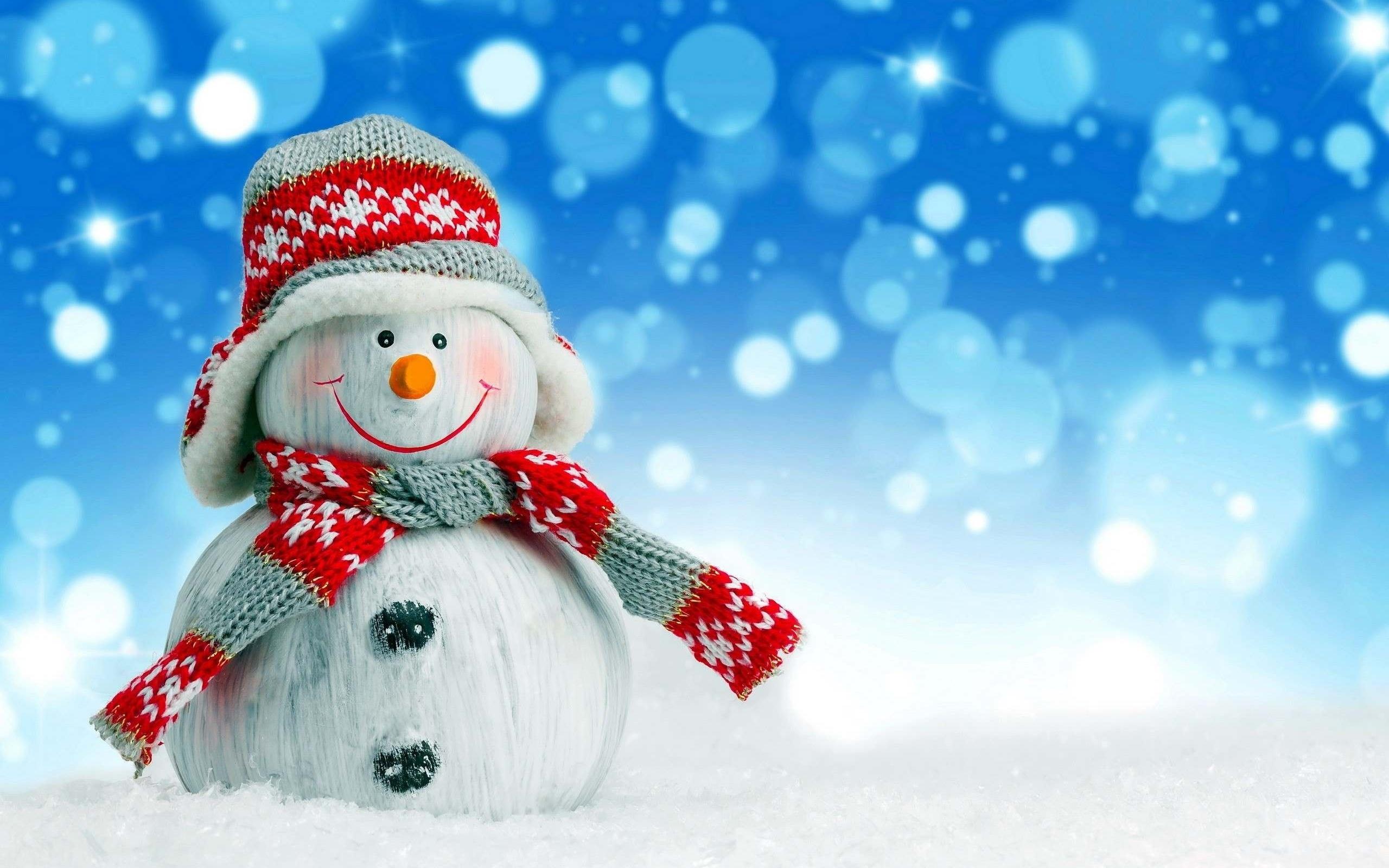 Прикол животными, веселые картинки со снеговиками
