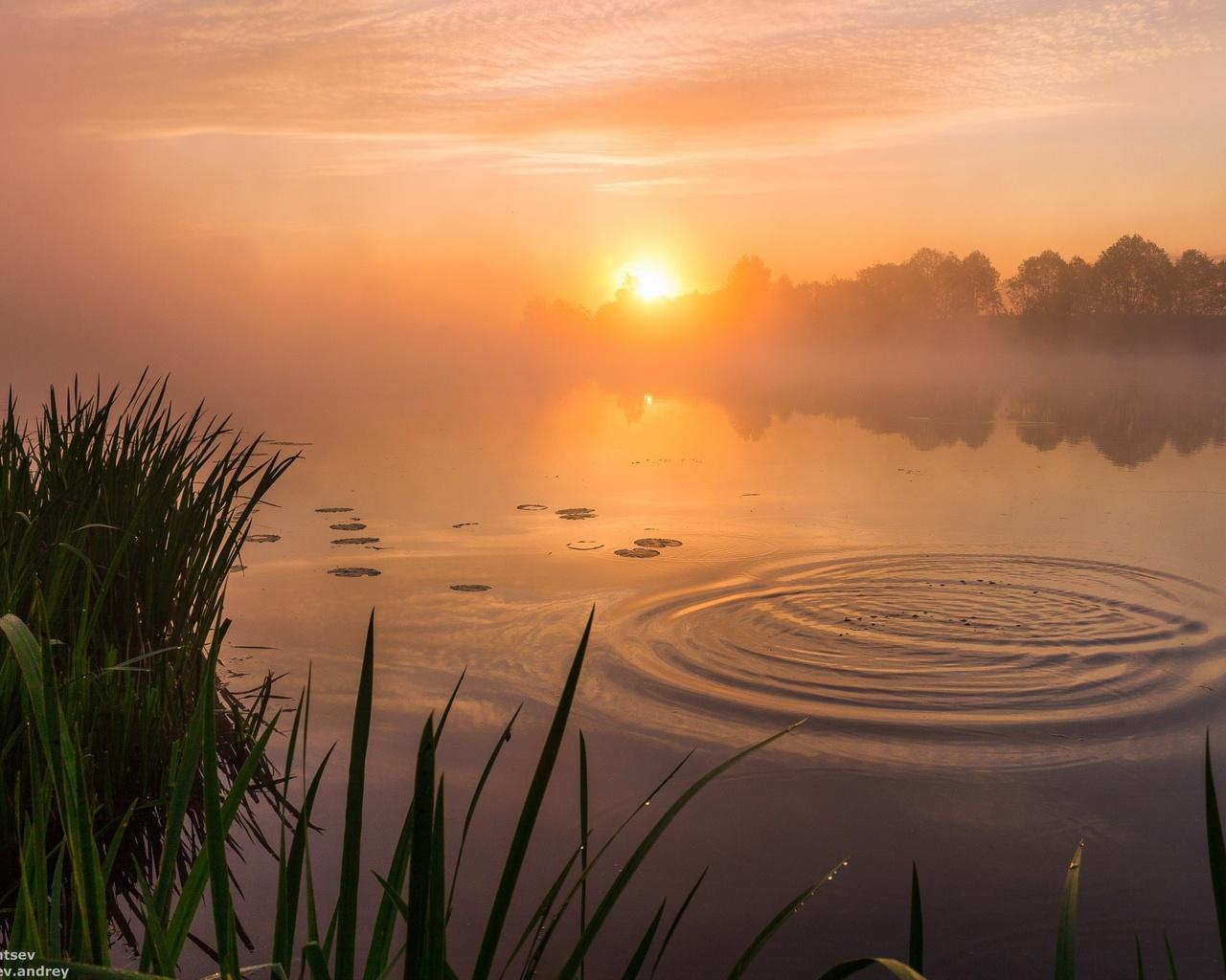 Картинки утро природа рассвет