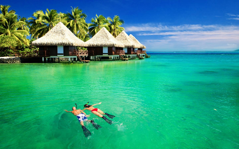 французская полинезия, пальмы, красота, люди, отдых