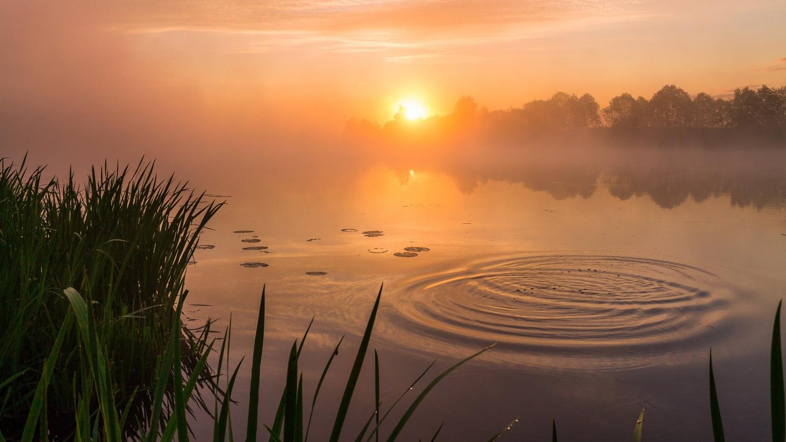 фото красивая утренняя