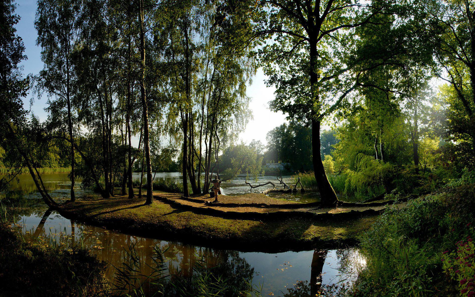 природа, парк, деревья,крона,кустарник,листва,зелень,облака,облака