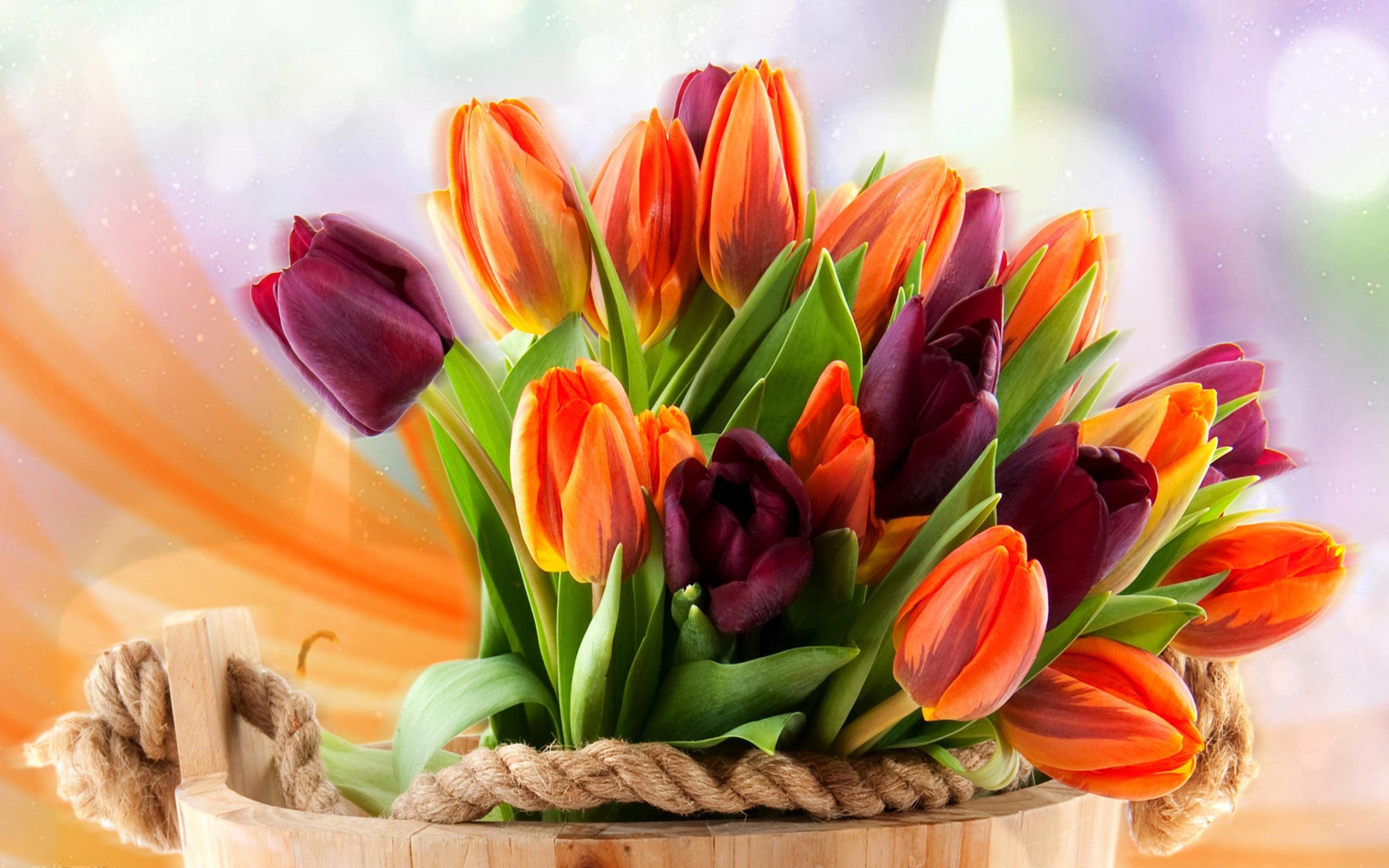 Написать, открытки с днем рождения цветы тюльпаны