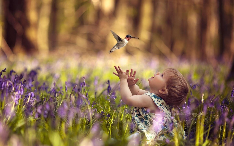 claire conybeare, ребёнок, девочка, малышка, природа, трава, платье, птичка, колибри, цветы