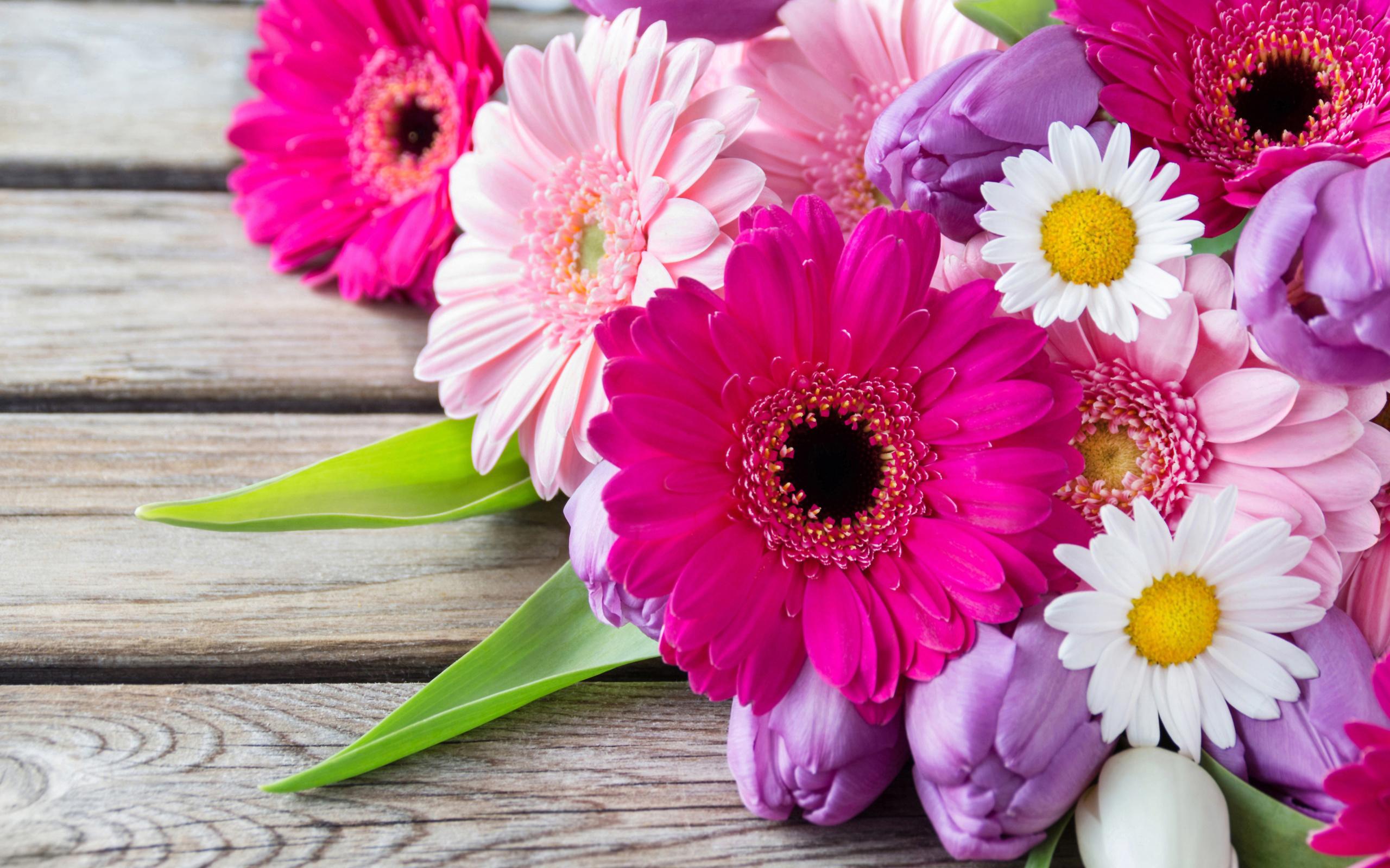 С днем рождения открытки цветы герберы, днем рождения