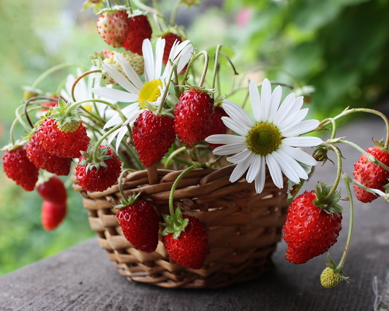 Анимационных, красивые картинки с ягодами и цветами и природой и надписями