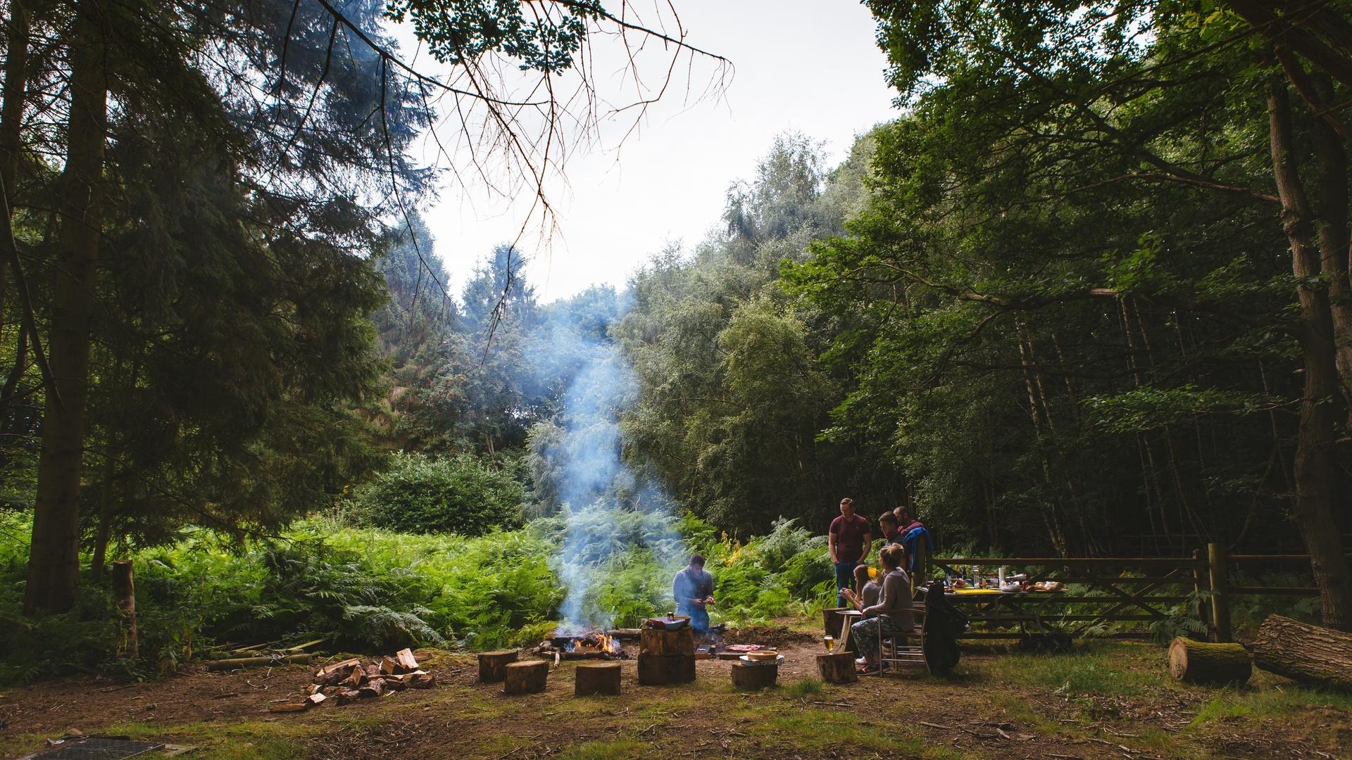 ожидали, фото отдых на природе в лесу первого знакомства