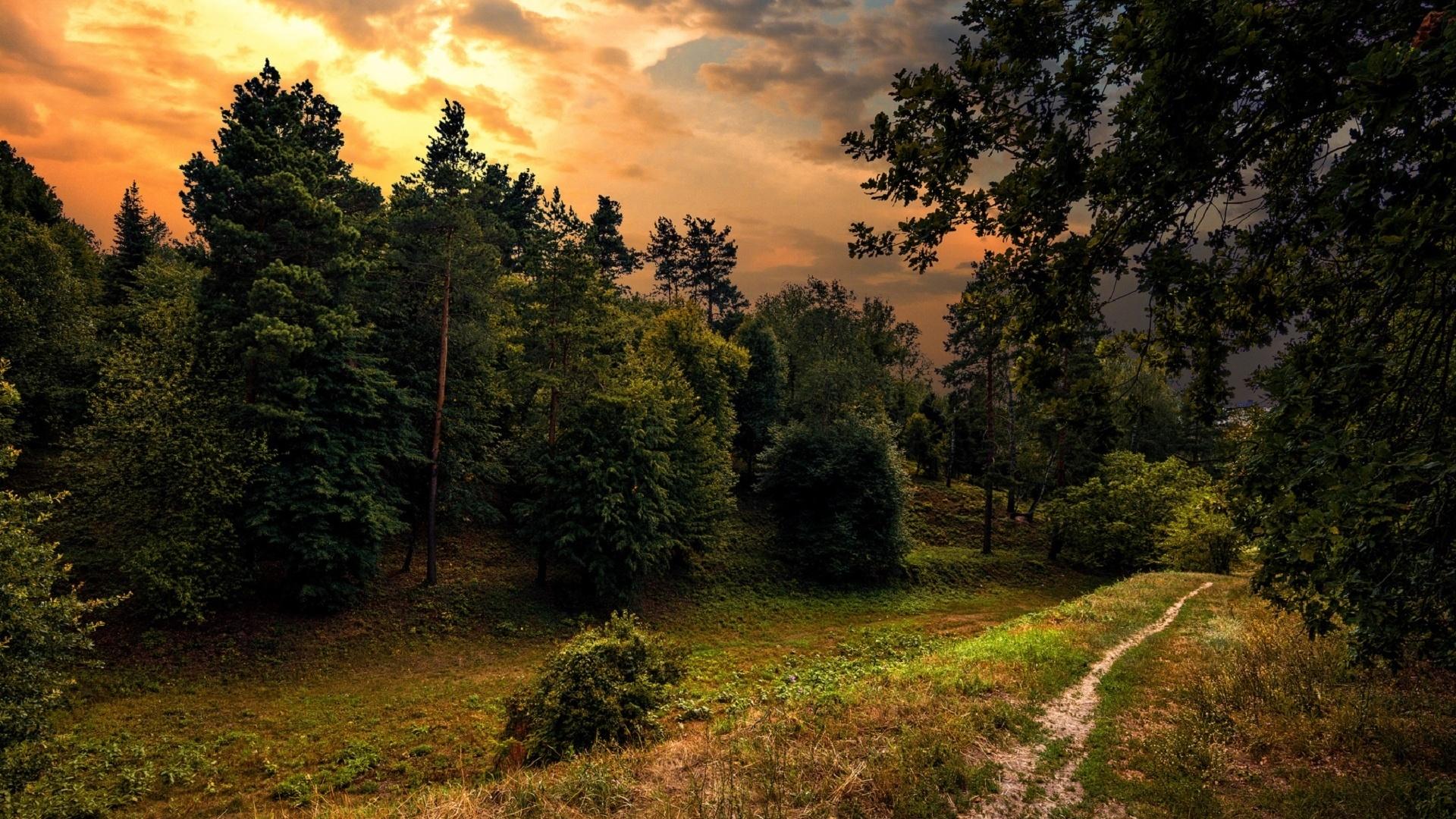 закат тропинка речка картинки близкого расположения печки
