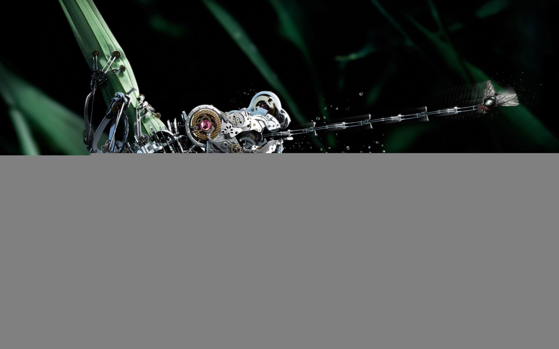 лягушка, муха, робот, макро