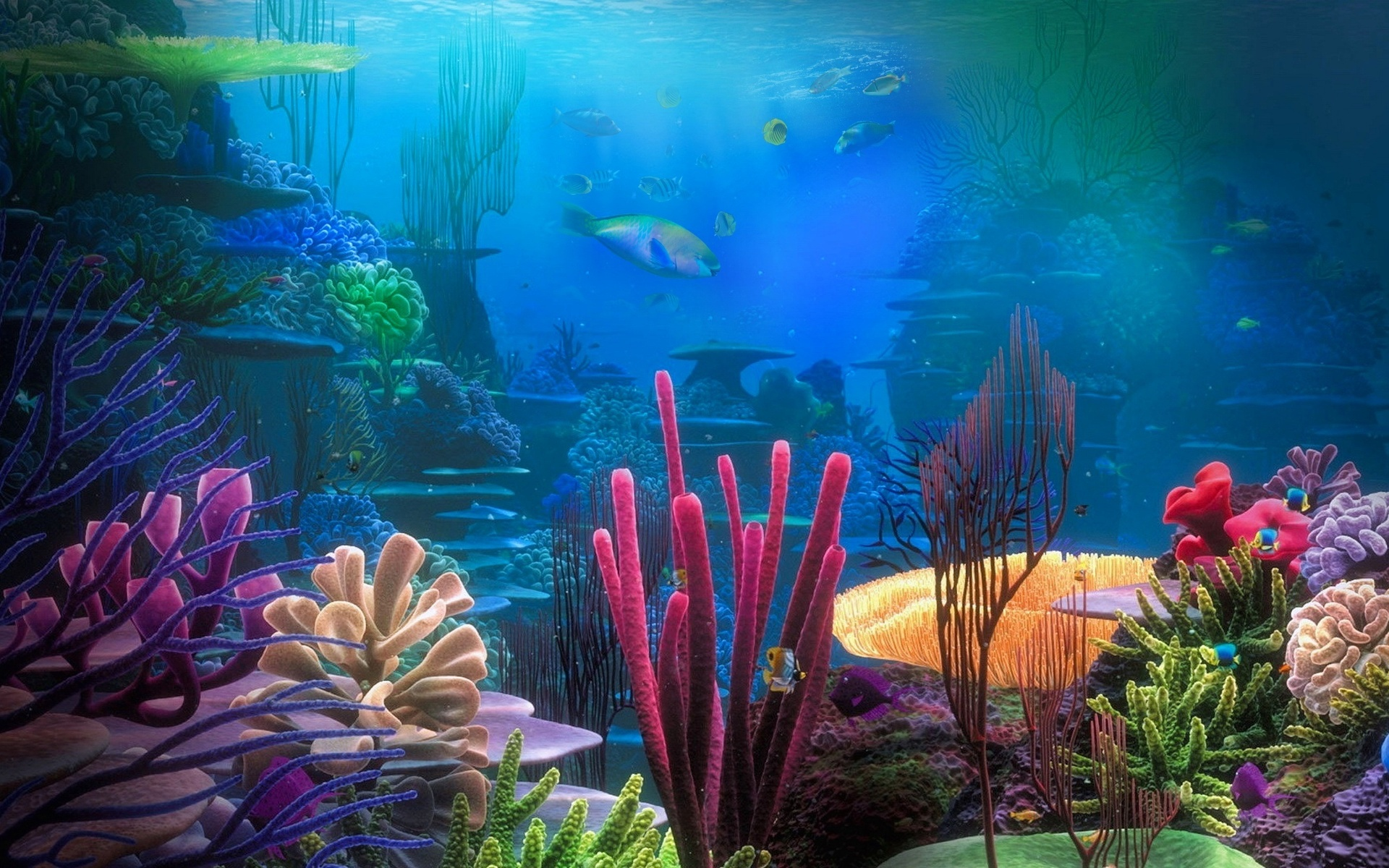 Февраля младшая, картинки подводного мира