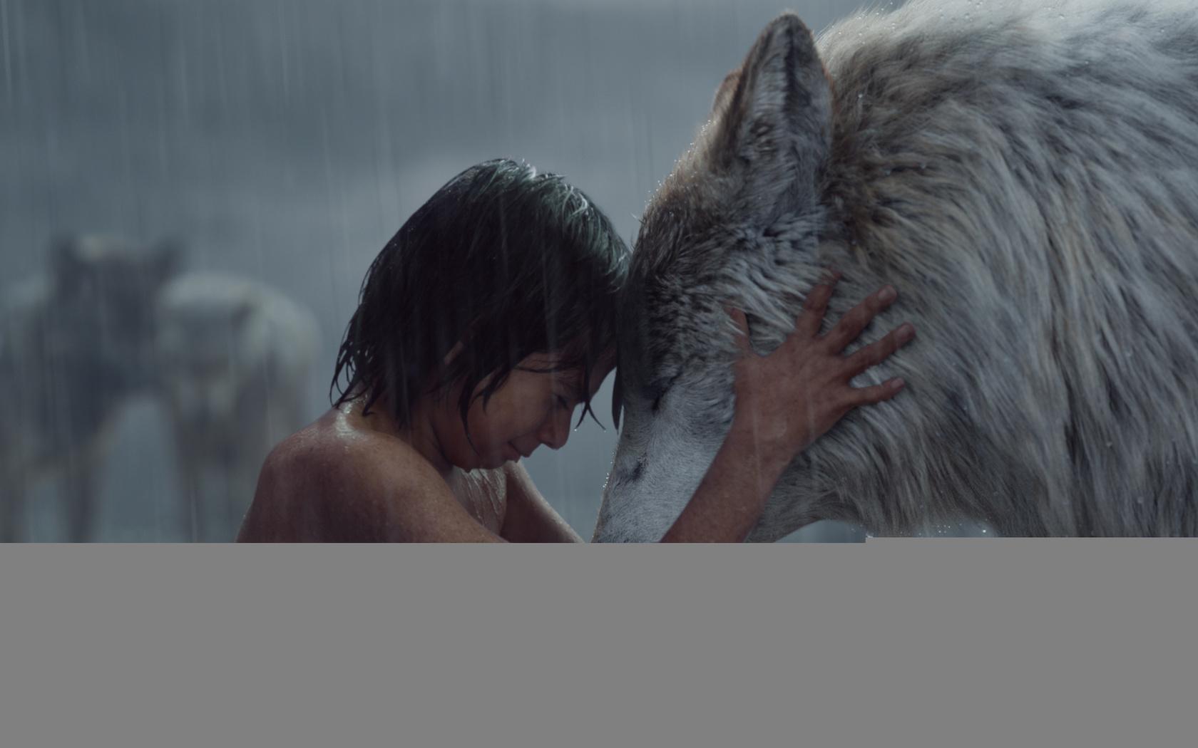 маугли, волк, фильм
