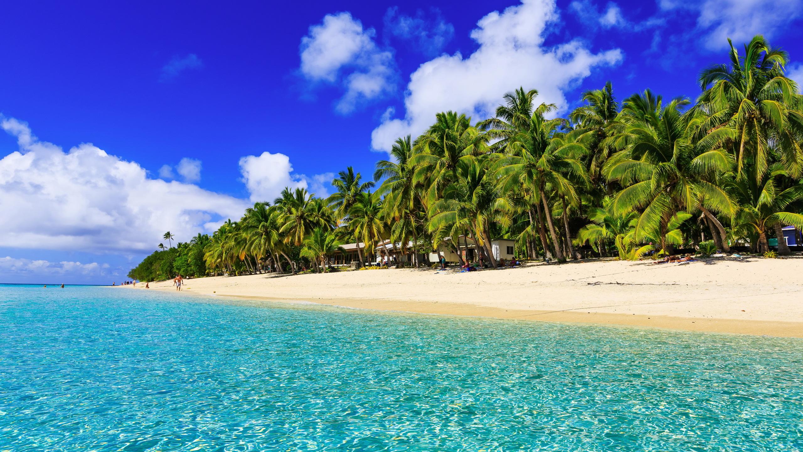 тропики, курорт, пальмы, океан, берег, пляж, пальмы