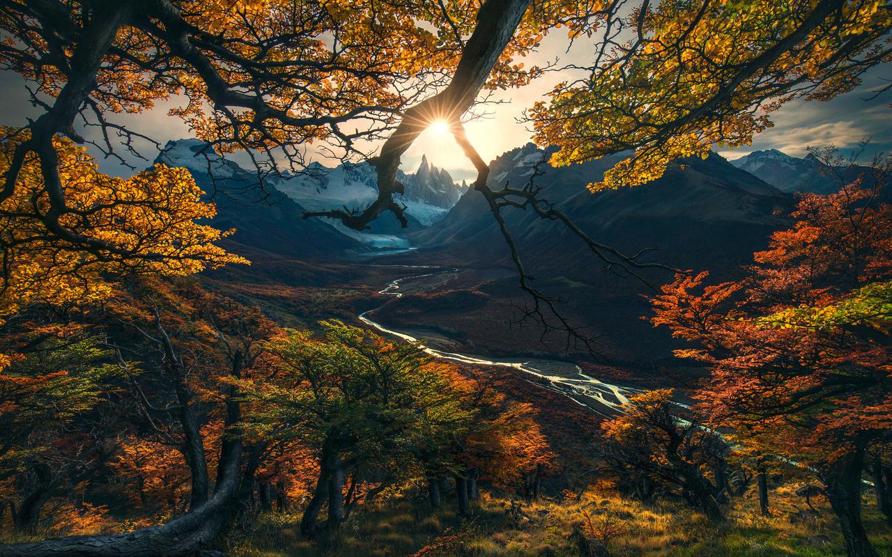 Обои тропа, грусть, Девочка, ноябрь, осень, настроение, серость. Природа foto 11