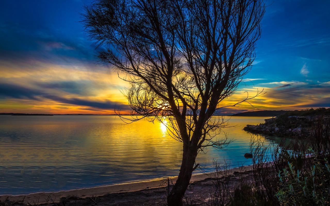 пейзаж, море, небо, дерево, природа, закат