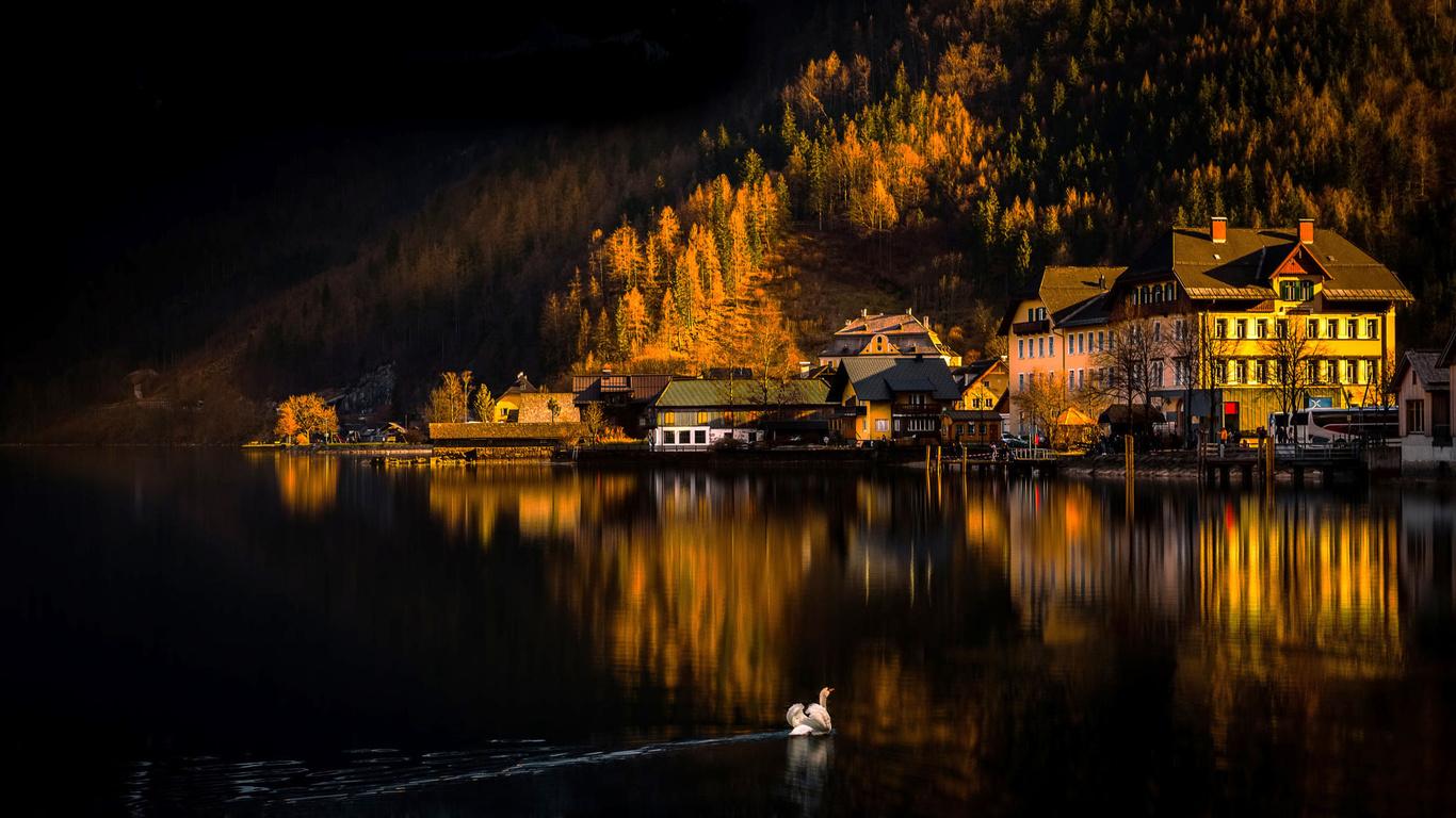 халльштатт, гальштат, австрия, austria, hallstatt, горы, холмы, озеро, город, община, дома, природа, осень, пейзаж, птица, лебедь