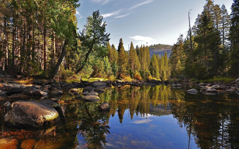 природа, лес, река, осень, вода, отражения