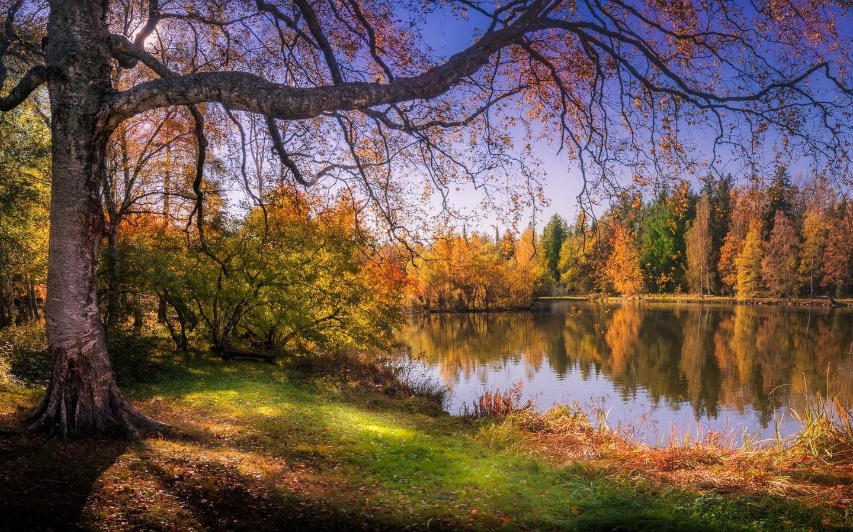 осень, небо, лес, озеро, отражение, финляндия