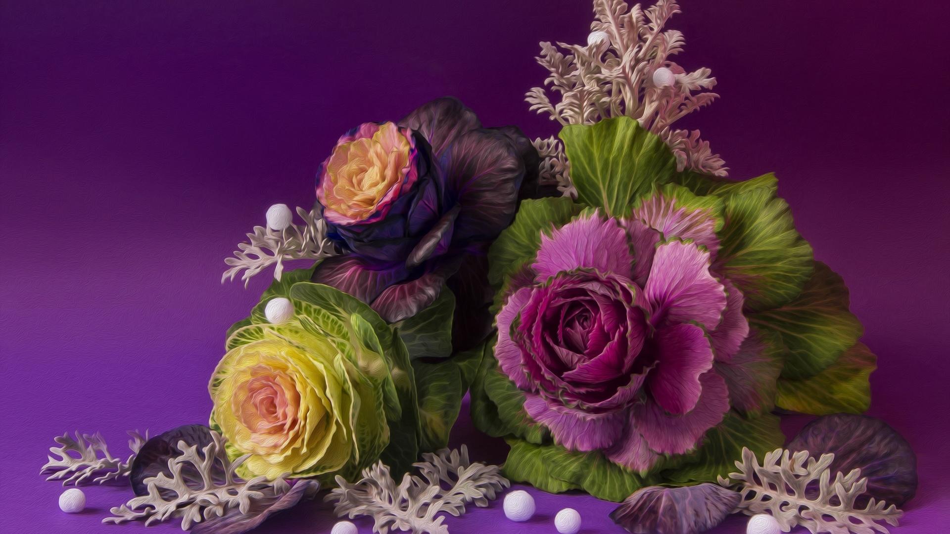 дизайн, осень, овощи, натюрморт, капуста