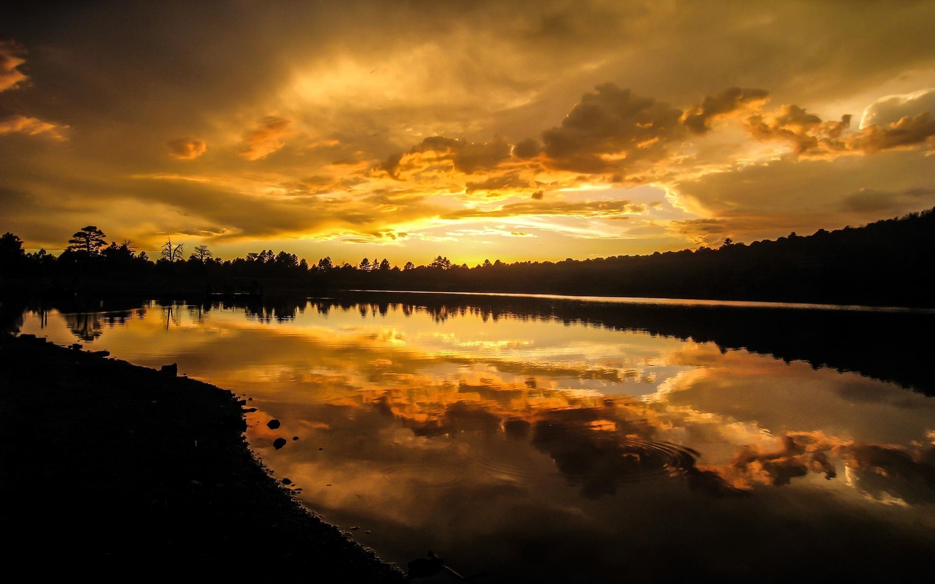 природа, озеро, зарево, лес