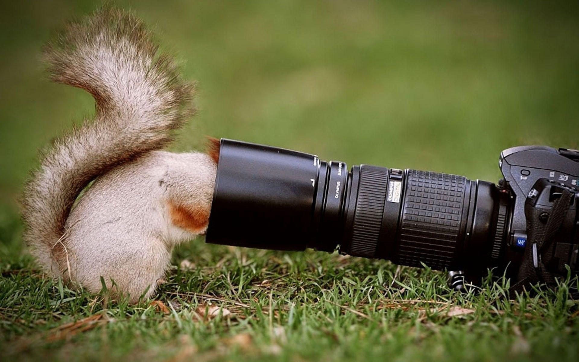 Презентация, картинки супер фотограф
