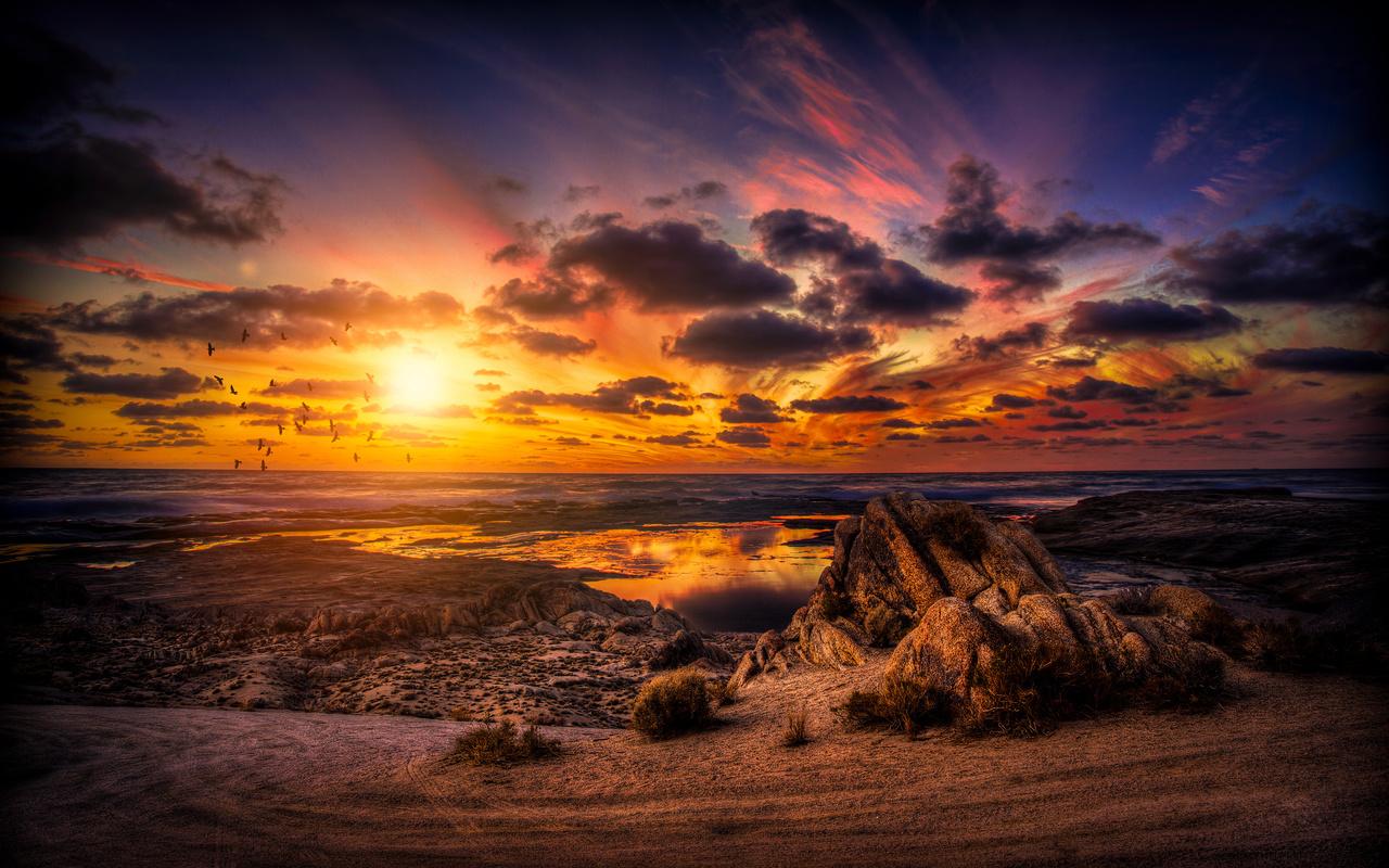 закат, облака, небо, море, птицы