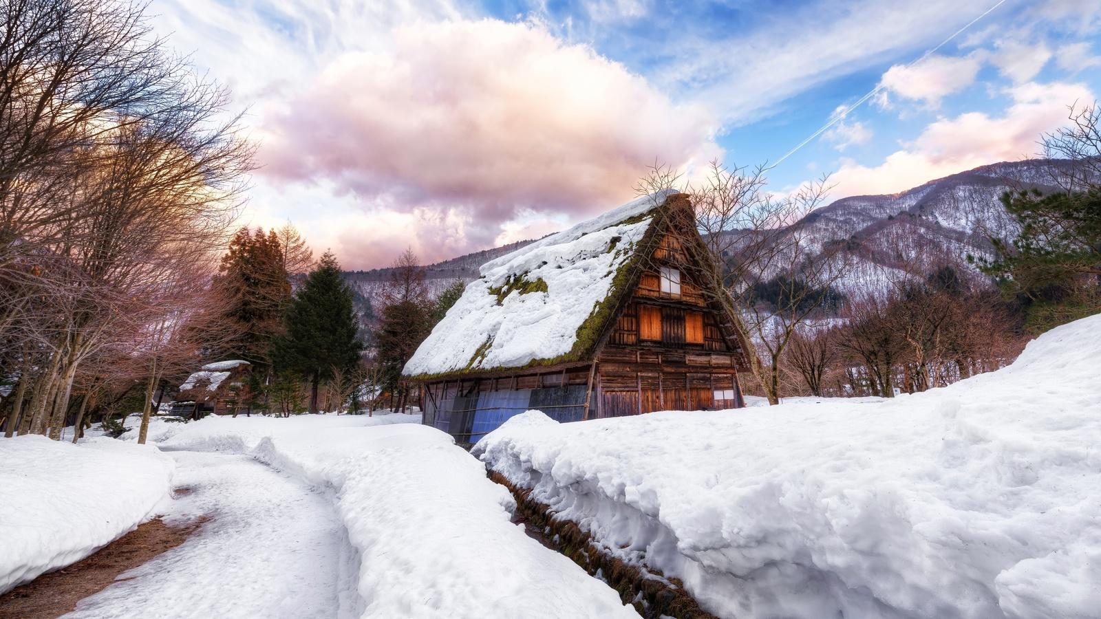 Япония, деревня, дом, густой снег, зима, деревья, облака