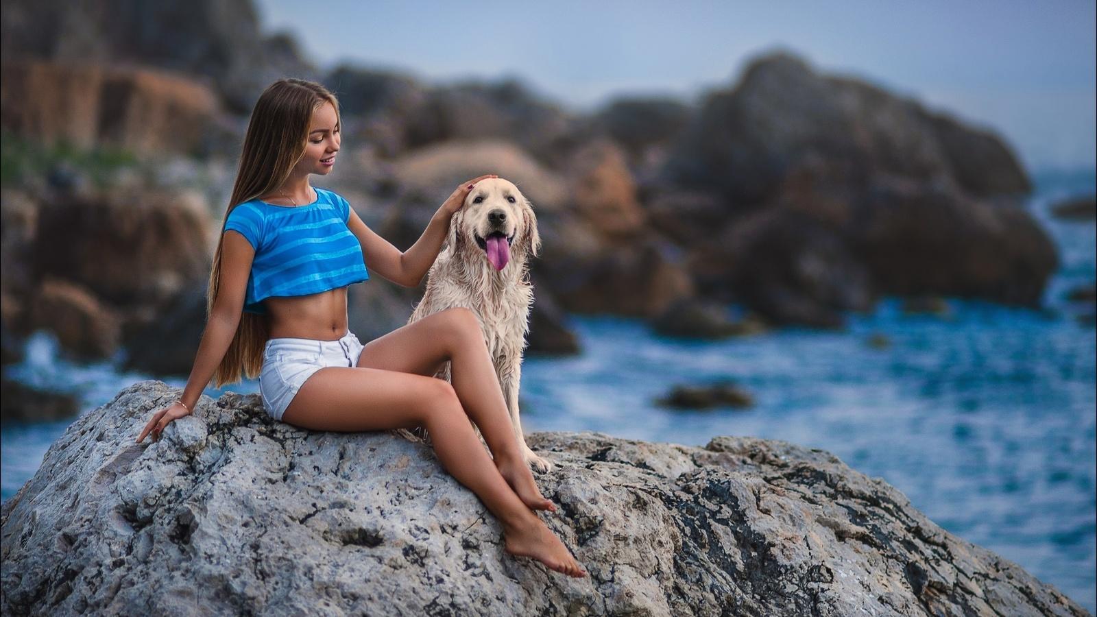 девушка, длинные волосы, красивая, пес, море, камни, настроение