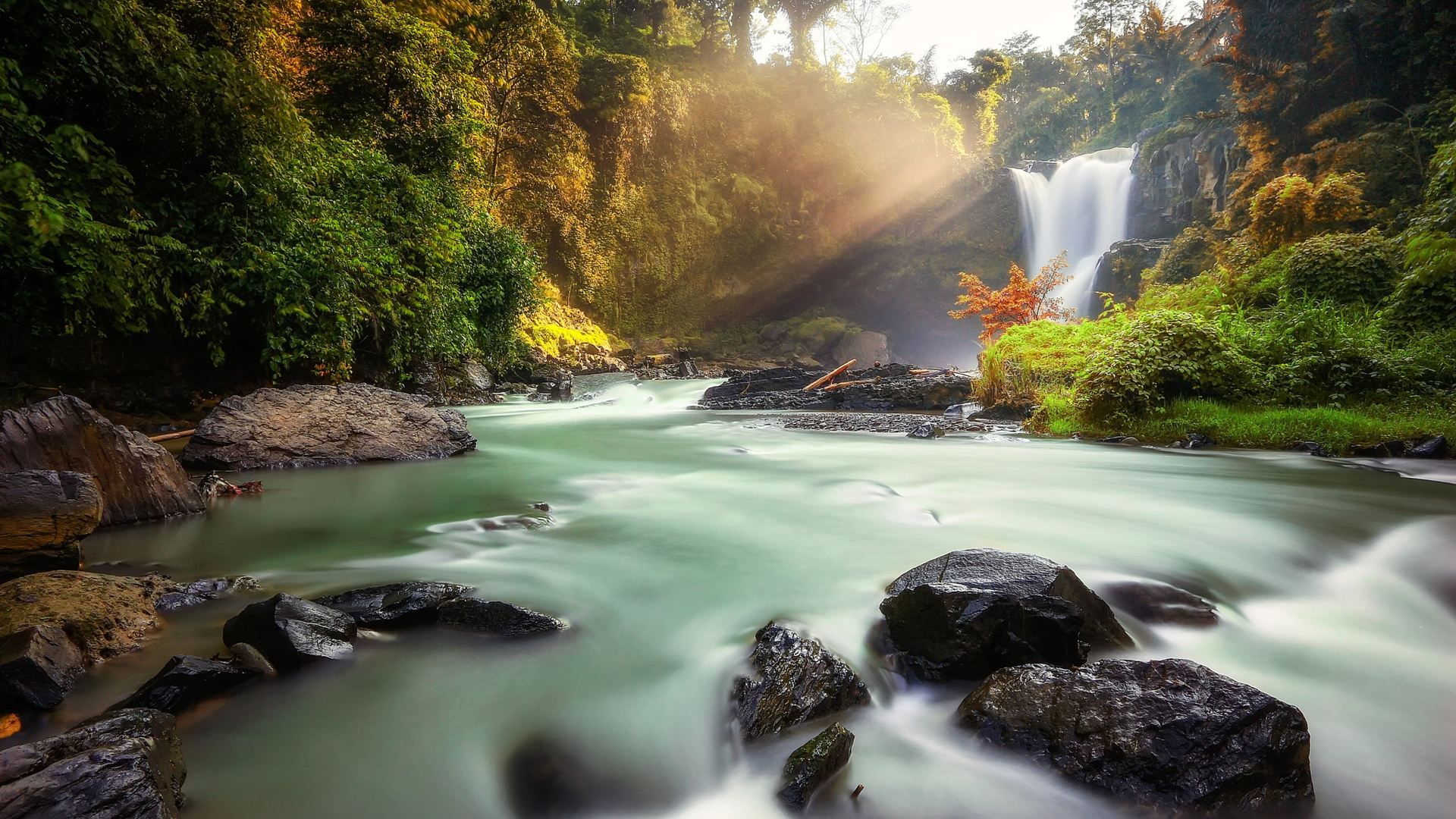 индонезия, природа, водопад, тегенунган, река, камни, лес, лучи, gede suyoga