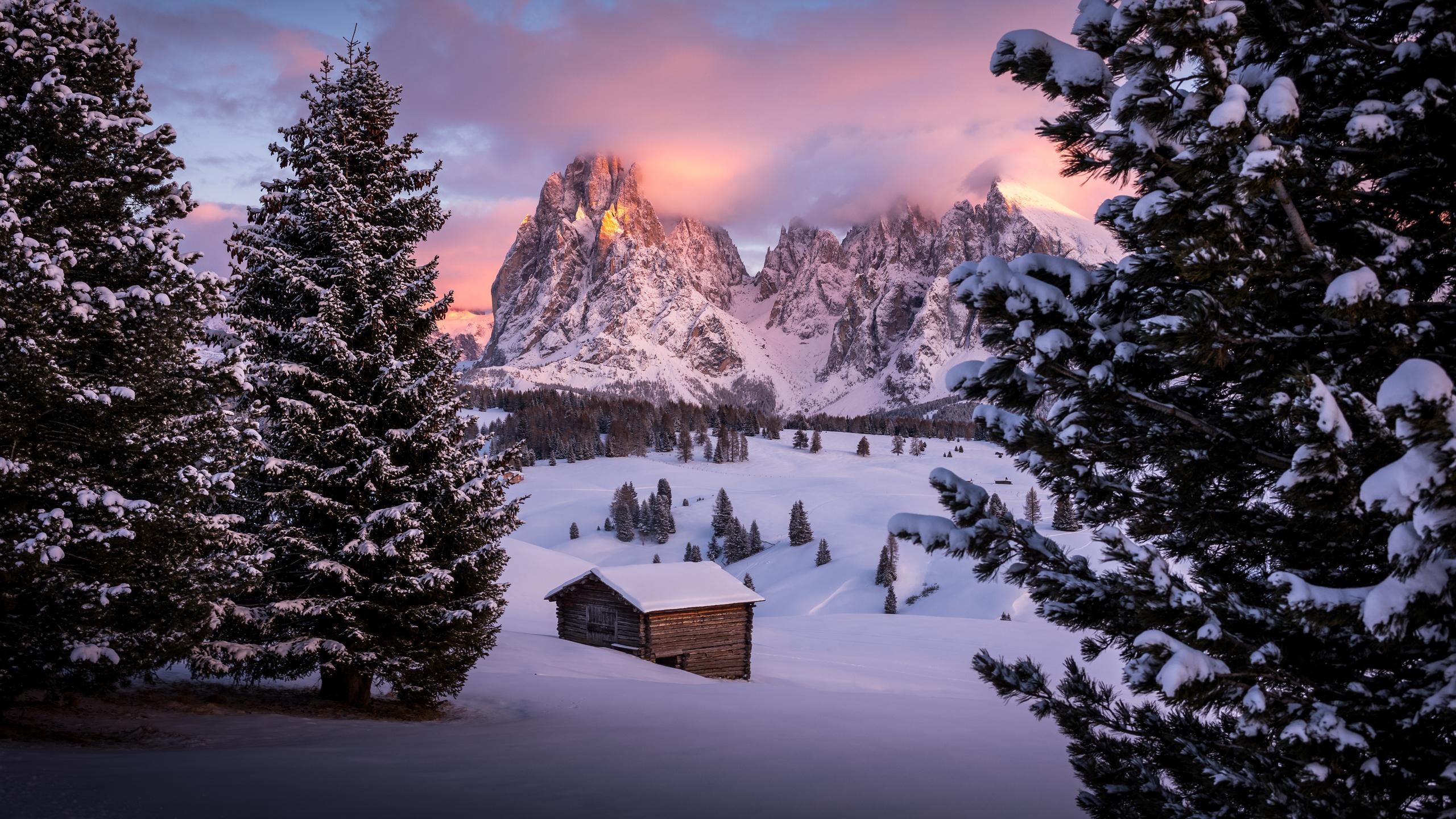 домик, горы, деревья, снег, южный тироль, доломиты, италия