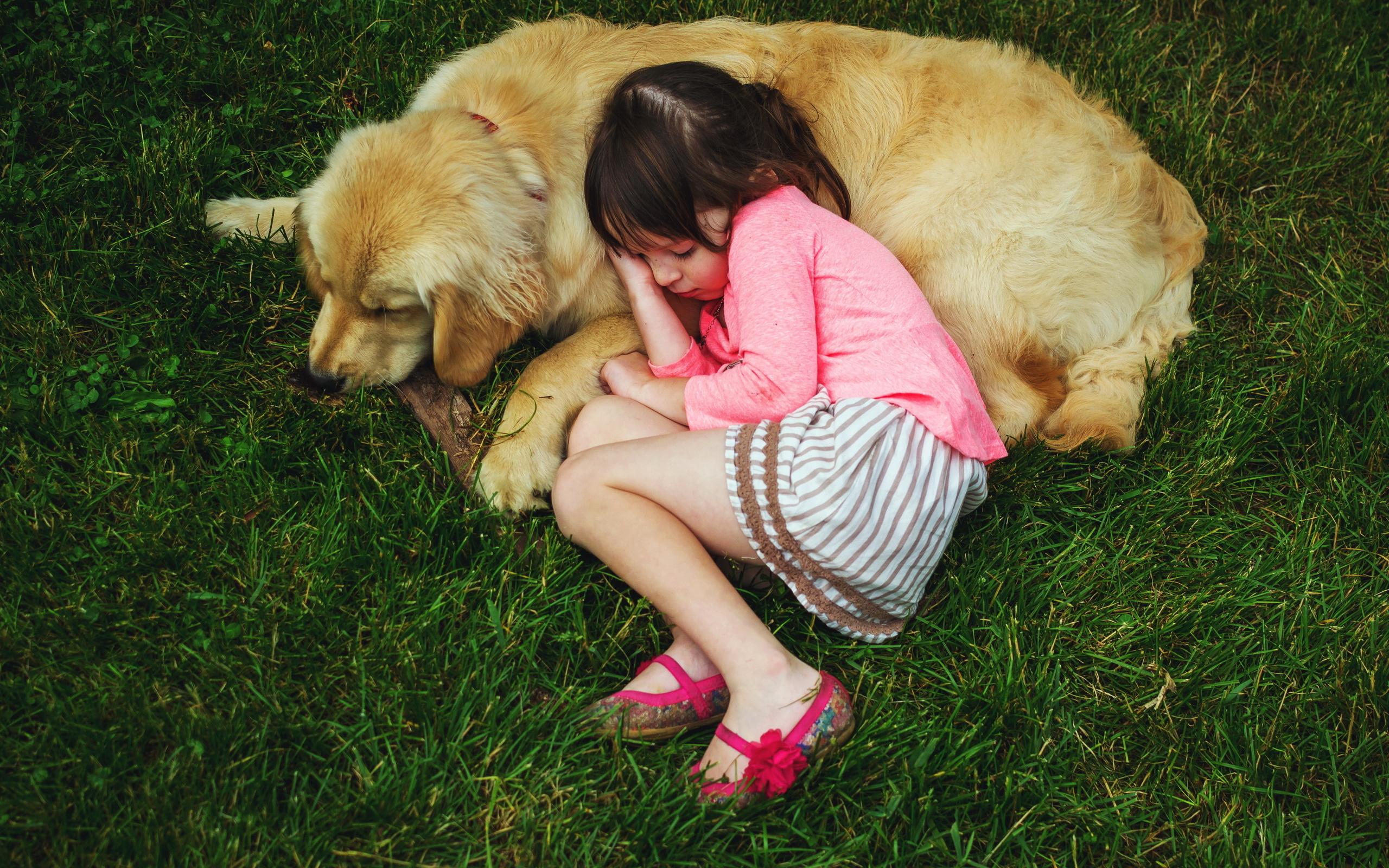 девочка, ребенок, собака, фото. сон, позитив, друзья