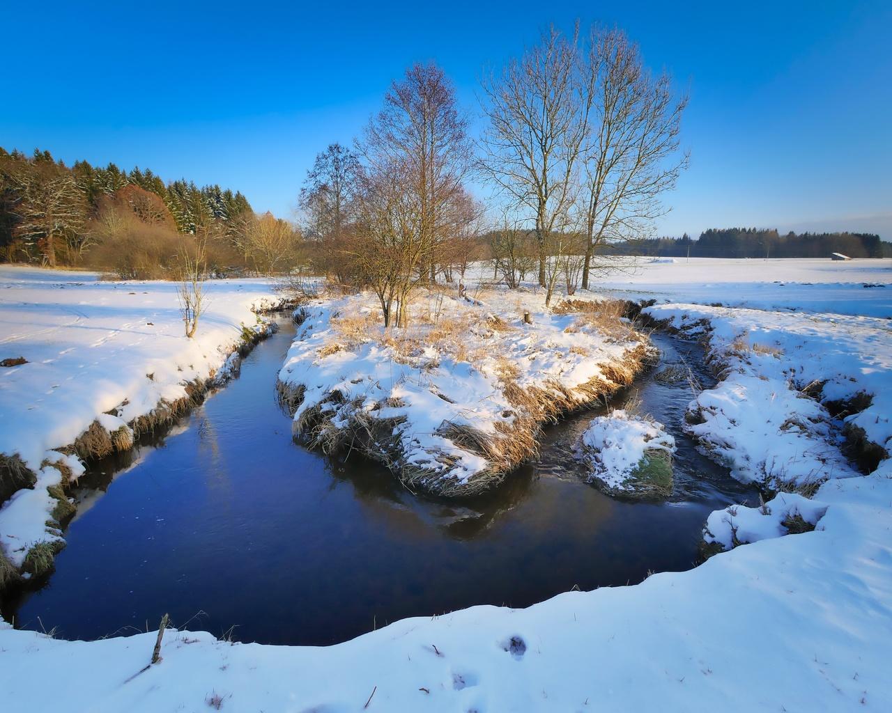 вода, снег, деревья, поле