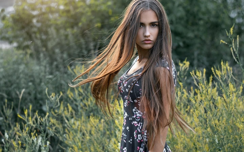 девушка, портрет, на природе, модель, анастасия лис, фотографии, андрей ермишин, высокая трава