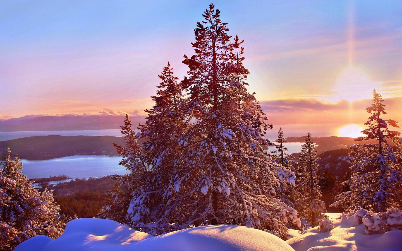 канада, хомы, природа, пейзаж, зима, снег, ели, деревья, закат, солнце, холмы