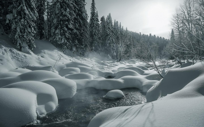 природа, пейзаж, лес, река, деревья, ели, россия, амзас, зима, снег, сугробы