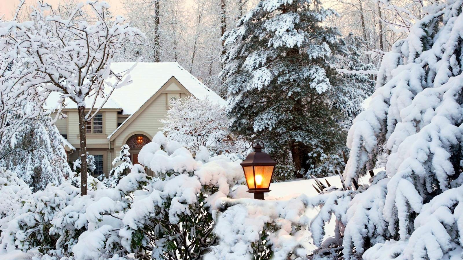природа, зима, снег, дом, двор, деревья, ели, кусты, фонарь