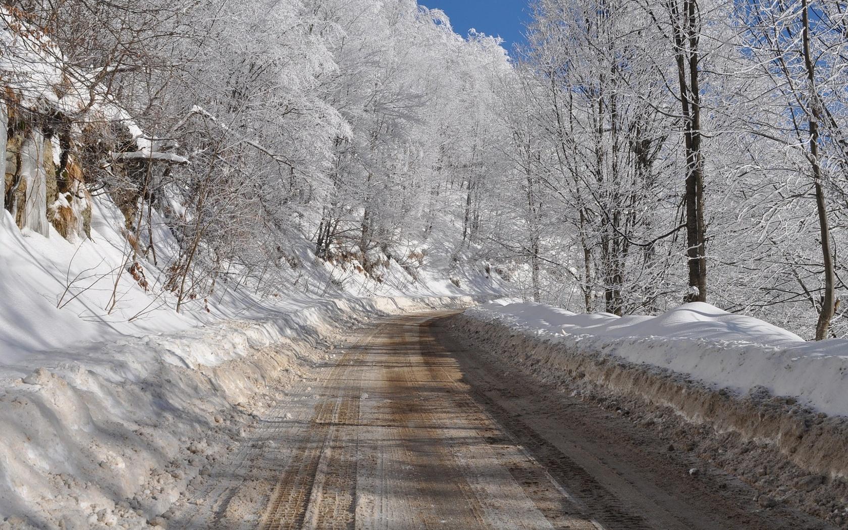 дорога, снег, лес