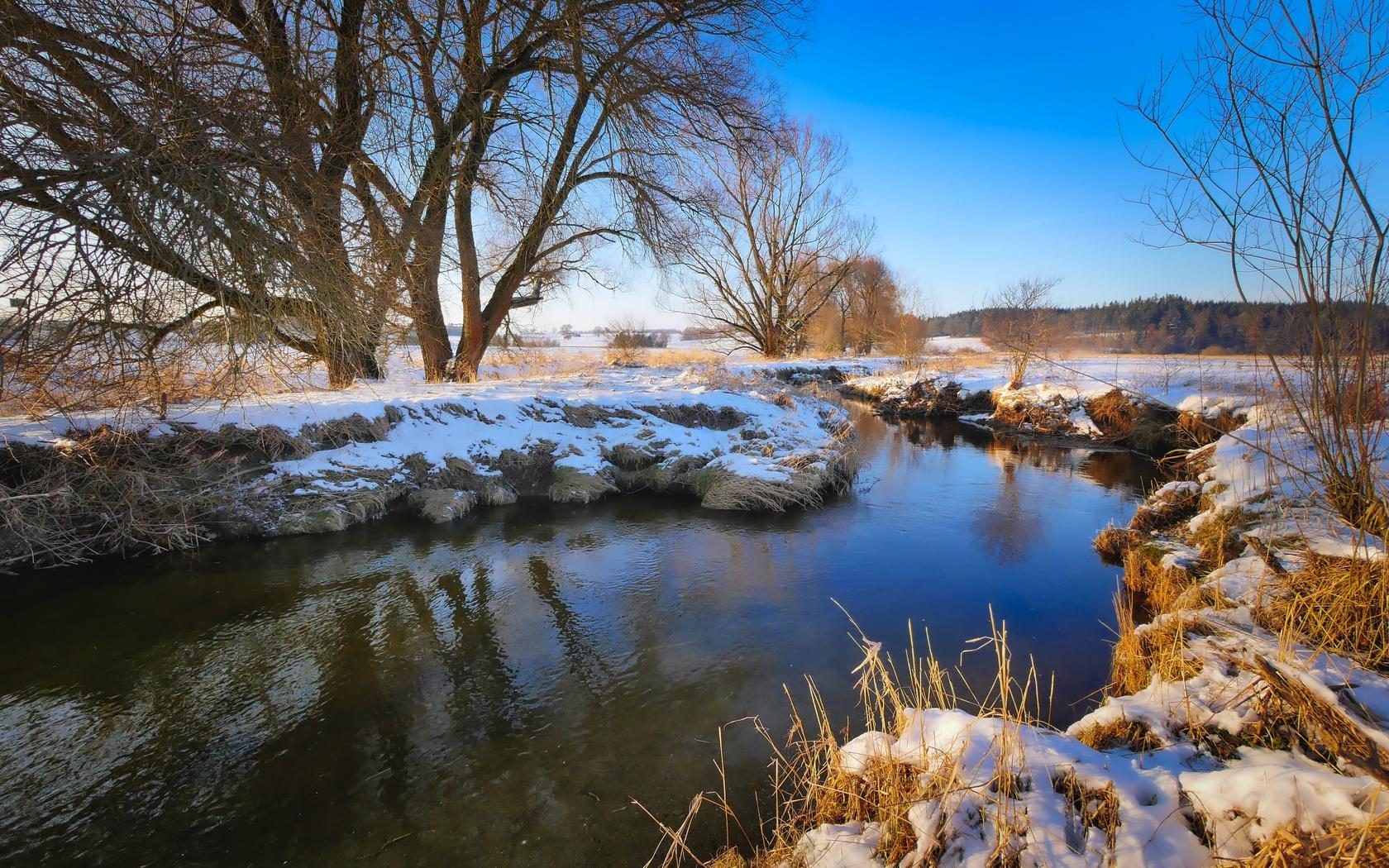 вода, деревья, снег, небо