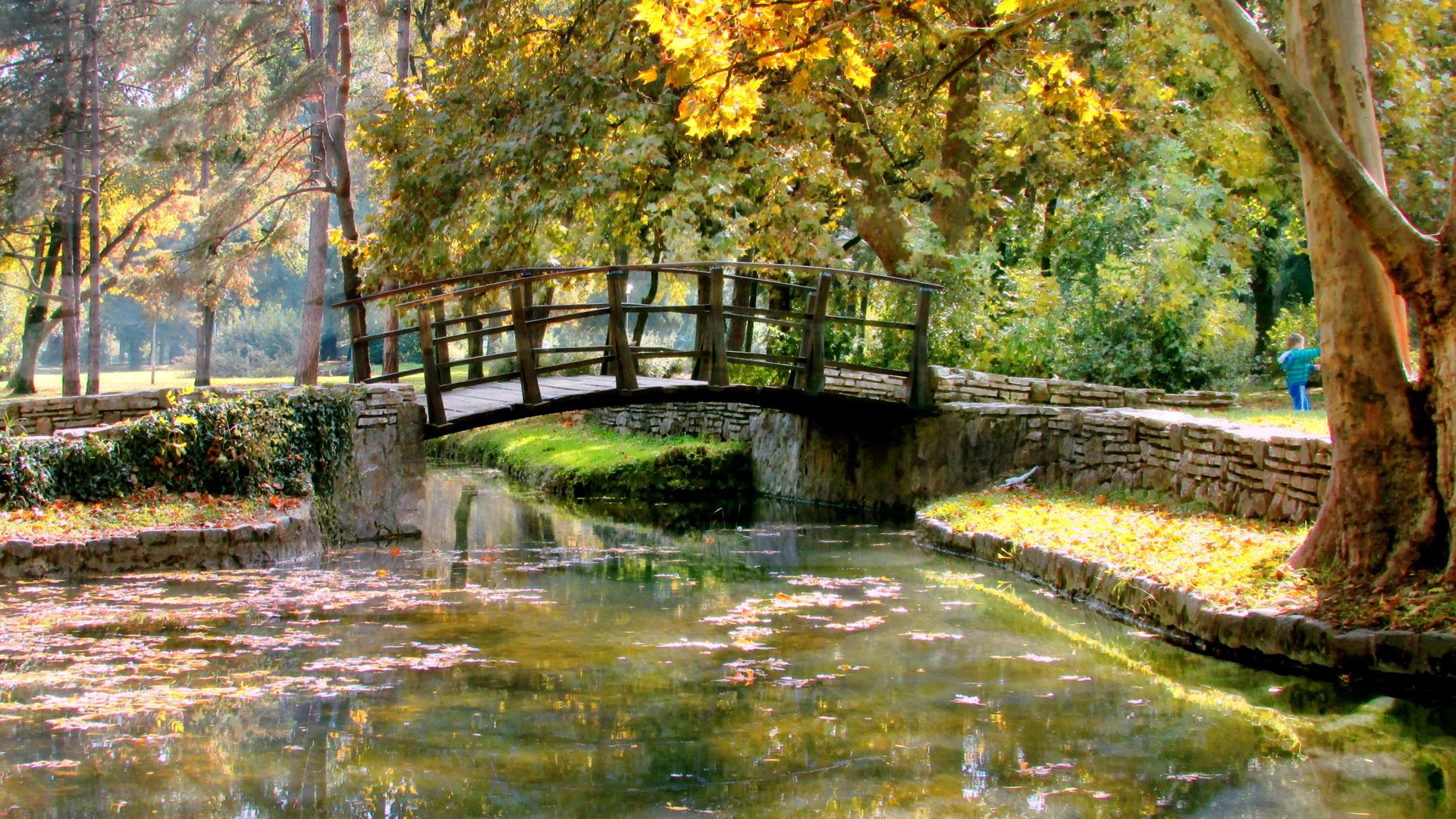природа, осень, парк, деревья, пруд, мостик
