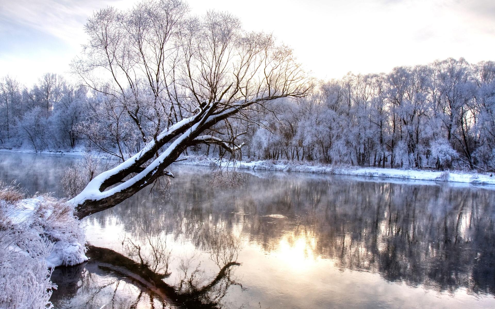 природа, пейзаж, зима, снег, река, деревья, отражение