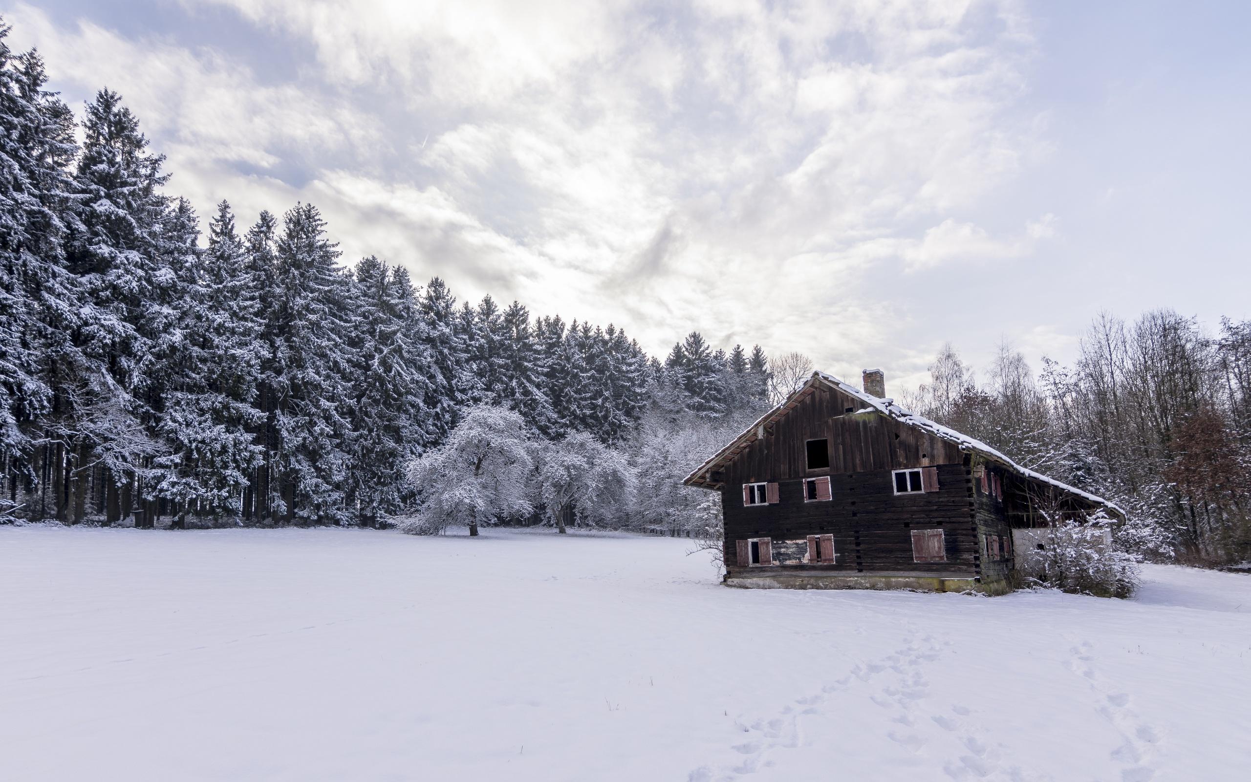 дом, снег, деревья