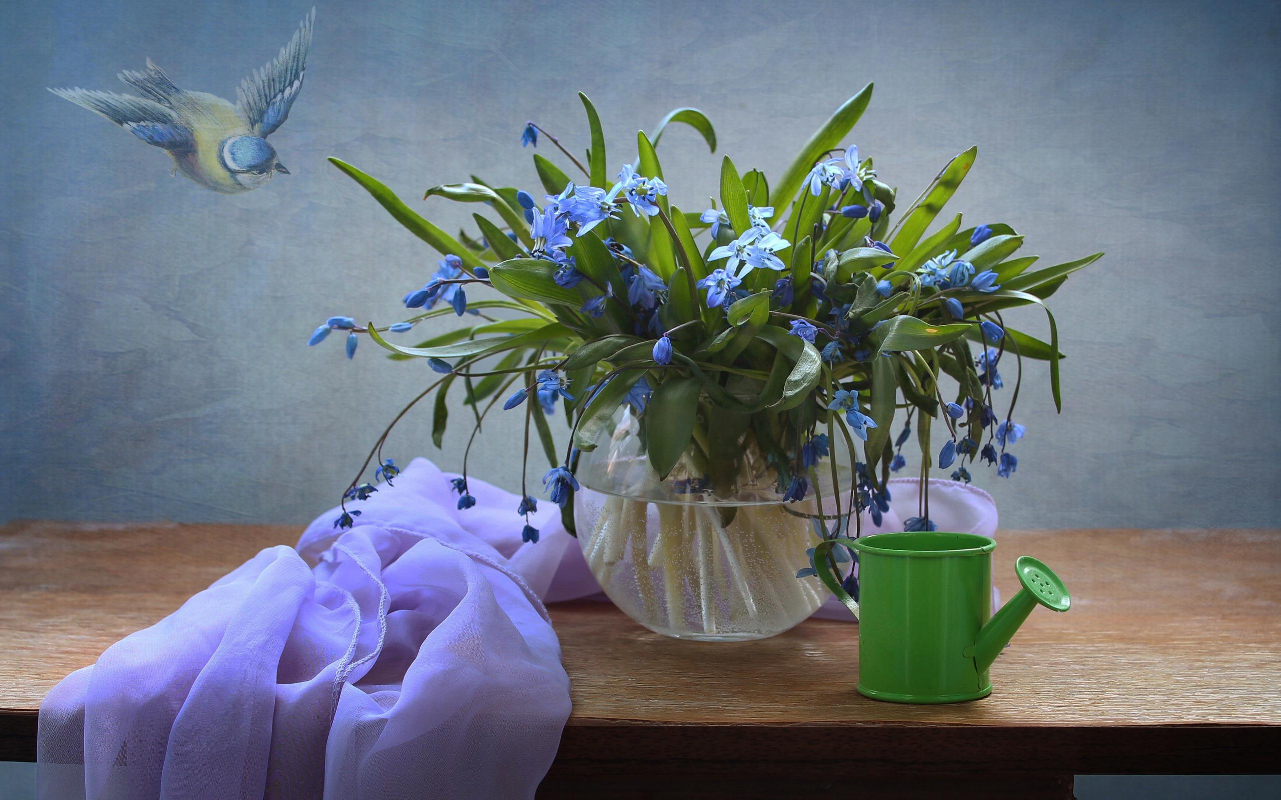 полка, ваза, цветы, пролески, лейка, платок, птичка, картина