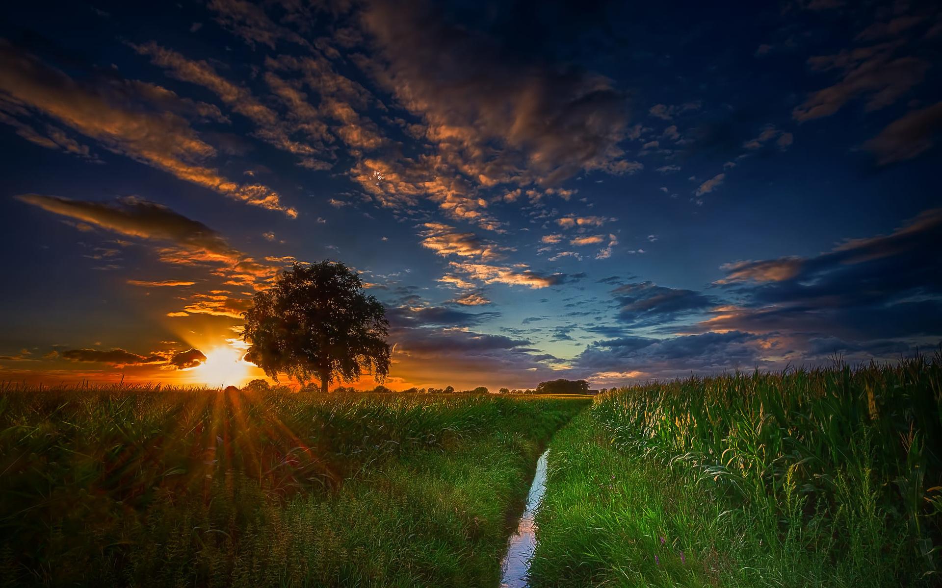 фото рассвет восход солнца дунаевский- классик советской
