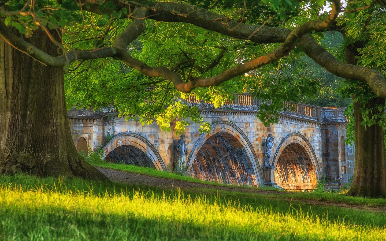 великобритания, мост, скульптуры, ветки, трава, природа