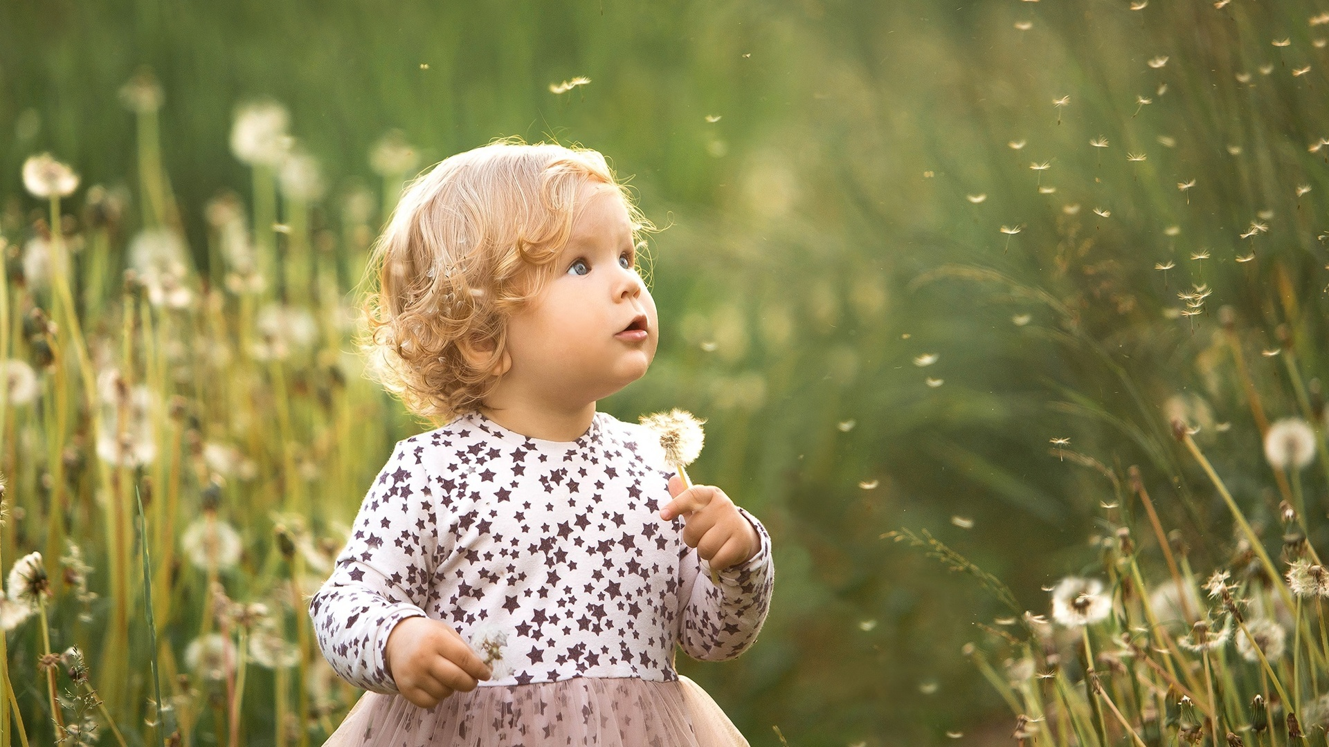 ребёнок, девочка, малышка, платье, кудри, природа, трава, одуванчики